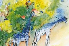 Zoologischer Garten, Giraffen